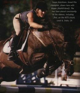 Performance Horse International mare