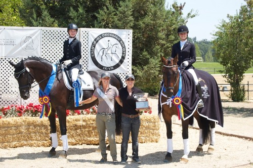 Hanoverian mare for sale