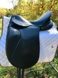 17.5 in seat Passier dressage saddle for sale